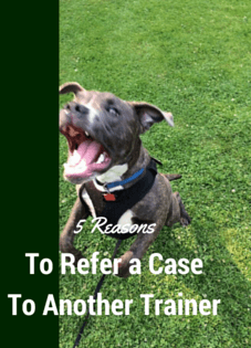 5 Reasons You Should Refer A Case To Another Trainer
