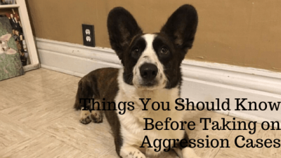 Things You Should Know Before Taking On Aggression Cases