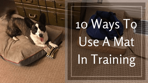 10 Ways To Use A Mat In Training