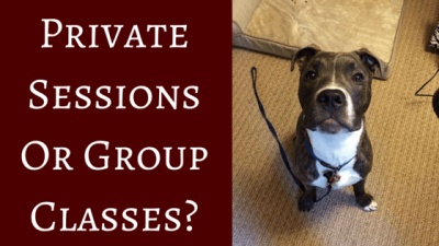 Private Sessions Or Group Classes?
