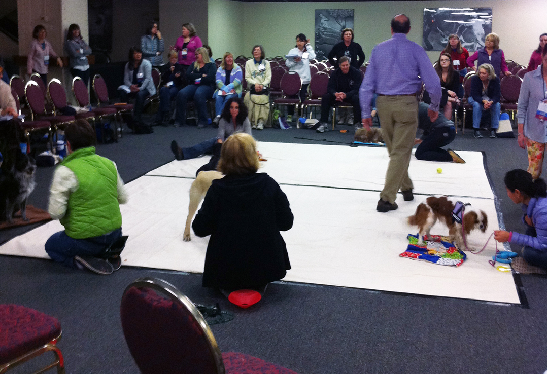 Top 10 Dog Training Conferences for 2015