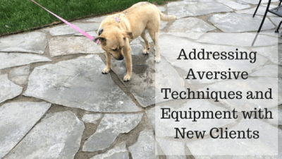 The Best Approach for Addressing Aversive Techniques and Equipment with New Clients