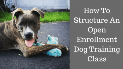 How To Structure An Open Enrollment Dog Training Class