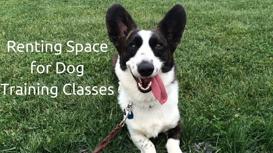 Renting Space for Dog Training Classes