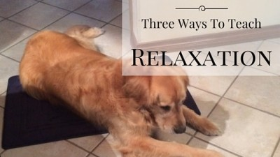 Three Ways To Teach Relaxation