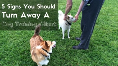 5 Signs You Should Turn Away A Dog Training Client