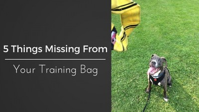 5 Things Missing From Your Training Bag
