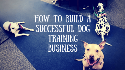 Guest Post: How to Build a Successful Dog Training Business
