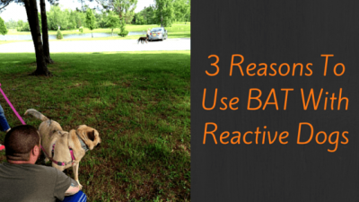 3 Reasons To Use BAT With Reactive Dogs