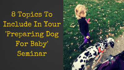 8 Topics To Include In Your 'Preparing Dog For Baby' Seminar