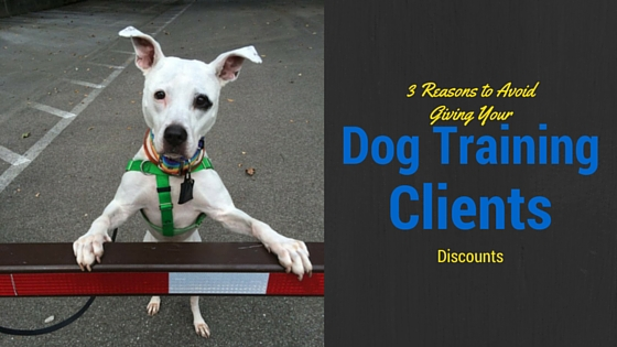 Dog Training Clients Discounts