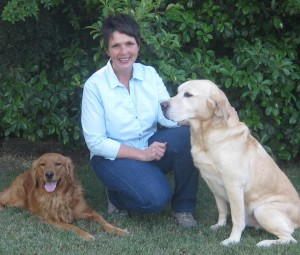 Karen with Cassidy (Golden Retriever) and Rock (Labrador Retriever)