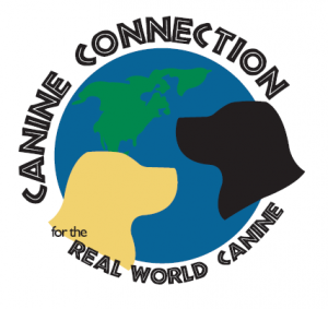 Canine Connection for the Real World Canine