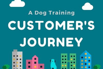 A Dog Training Client's Journey