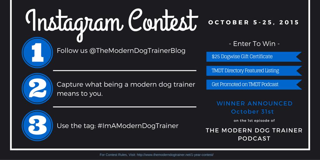 the modern dog trainer instagram contest