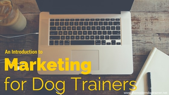 An Introduction to Marketing for Dog Trainers