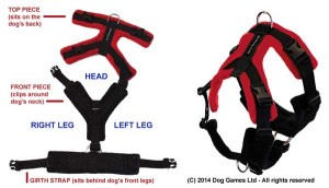 Perfect Fit Harness pieces