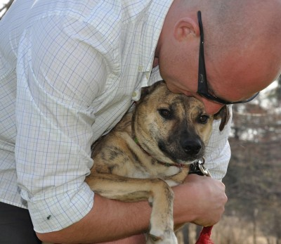 New Year's Resolutions For Dog Trainers