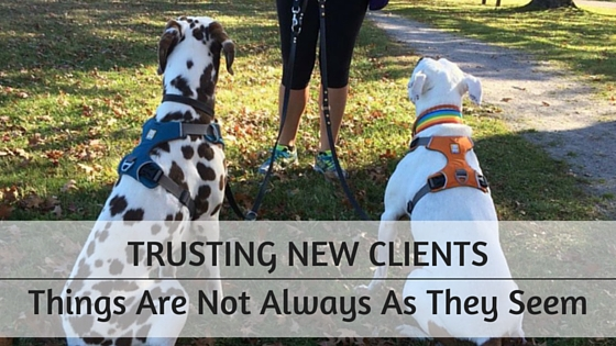 trusting new dog training clients
