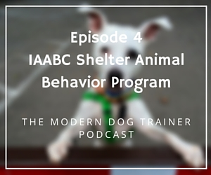 The Modern Dog Trainer Podcast – Ep. 4 The IAABC Shelter Program with Molly Sumridge