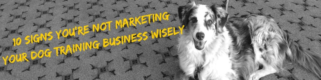 10 Signs You're Not Marketing Your Dog Training Business Wisely