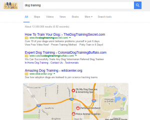 importance of getting indexed by google for your dog training business