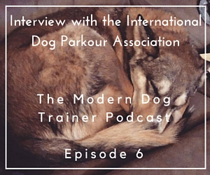 The Modern Dog Trainer Podcast – Ep. 6 Interview with the  International Dog Parkour Association
