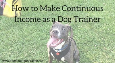 How To Make Continuous Income As A Dog Trainer
