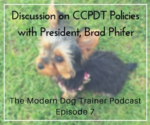 The Modern Dog Trainer Podcast – Ep. 7 Discussion on CCPDT Policies with President, Brad Phifer