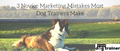 3 Novice Marketing Mistakes Most Dog Trainers Make