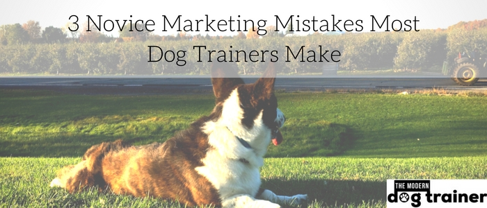 Marketing Mistakes Dog Trainers Make