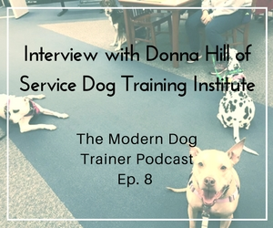 The Modern Dog Trainer Podcast – Ep 8 – Interview with Donna Hill of Service Dog Training Institute