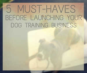 5 Must-Haves Before Launching Your Dog Training Business