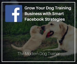 Facebook marketing tips for dog trainers
