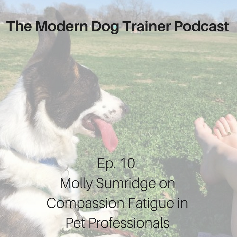 Ep. 10 – Molly Sumridge on Compassion Fatigue in Pet Professionals