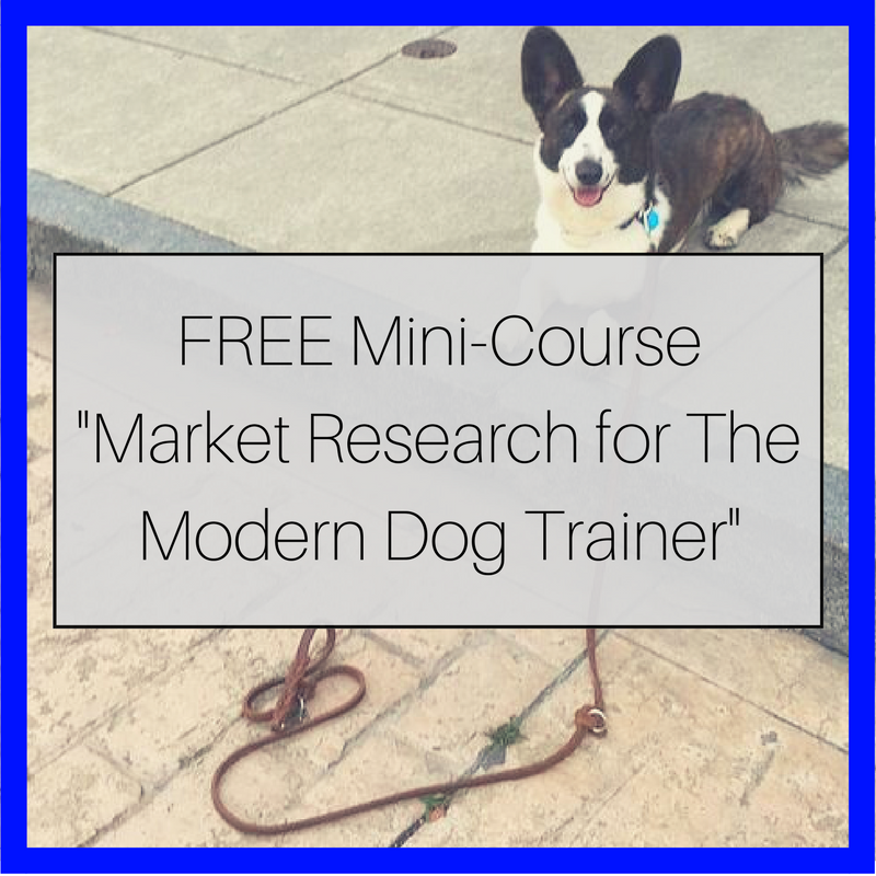 Why You Should Do Some Market Research Before Starting Your Dog Training Business