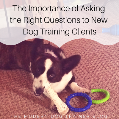 The Importance of Asking the Right Questions to New Dog Training Clients