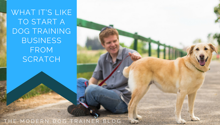 Guest Post – What It's Like to Start a Dog Training Business from Scratch