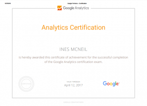 google analytics for dog trainers