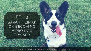 podcast with sarah on becoming a pro dog trainer