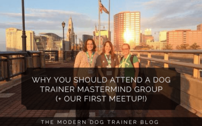Why You Should Attend A Dog Trainer Mastermind Group (+ Our First Meetup!)
