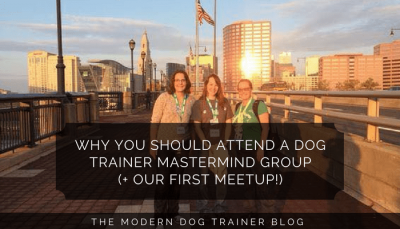Why You Should Attend A Dog Trainer Mastermind Group