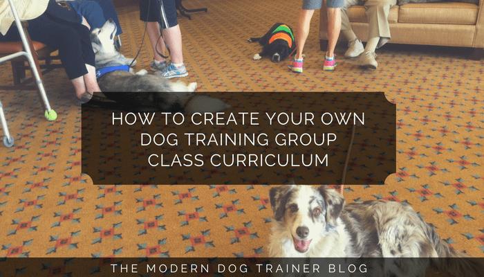 dog training group class curriculum creation