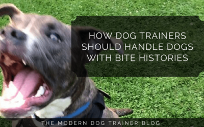 How Dog Trainers Should Handle Dogs With Bite Histories