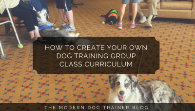 How to Create Your Own Dog Training Group Class Curriculum