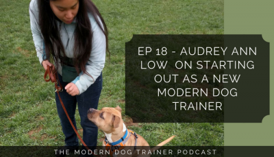 Ep 18 – Audrey Ann Low  on Starting Out as a New Modern Dog Trainer