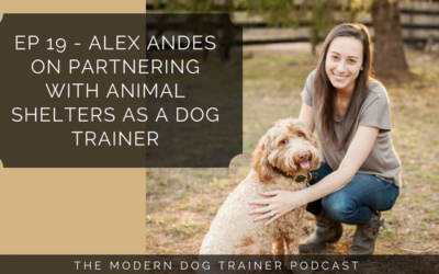 Ep 19 – Alex Andes on Partnering with Animal Shelters as a Dog Trainer