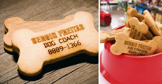 Creative dog training business card ideas the modern dog trainer dogcoach colourmoves